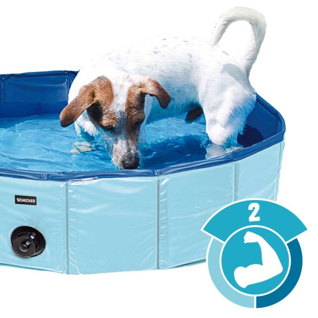 Hundepool Doggy Pool - Pool für Hunde